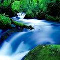 Photos: 奥入瀬渓流の有名な流れ。。阿修羅の流れ 9月12日