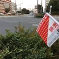 箱根駅伝。。今年は花の2区の鶴見付近。。1月2日