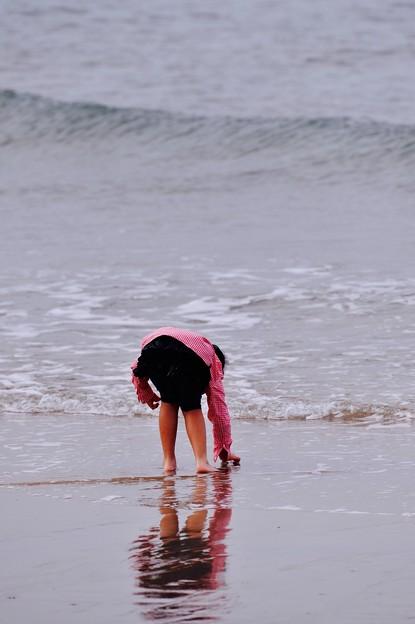 波打ち際で貝拾い。。芦屋海岸 20151121