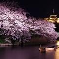 Photos: 水面が静かになった三渓園の池と夜桜・・20150331
