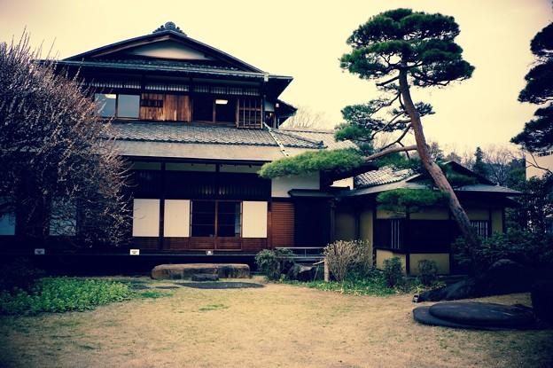 まるで昭和の高度成長期の財閥の邸宅。。江戸東京たてもの園 20160313