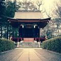 Photos: 旧自証院霊屋。。江戸東京たてもの園 20160313