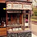 Photos: 昔の角のタバコ屋さん。。江戸東京たてもの園 20160313