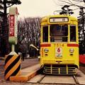 Photos: 昔の都電の停留所。。江戸東京たてもの園 20160313