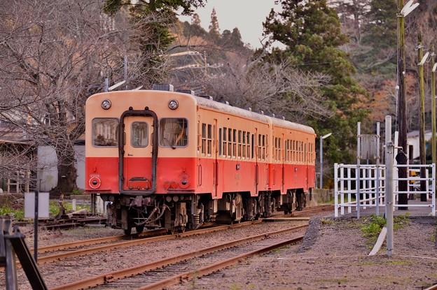 小湊鉄道。。里見駅へ到着したキハ200系 20171210
