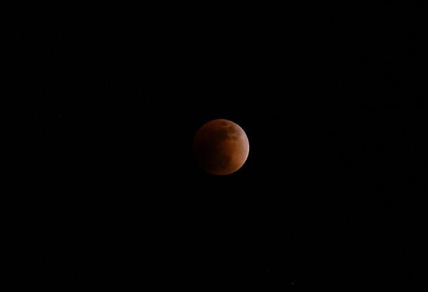 Photos: 撮って出し。。皆既月食? 1月31日