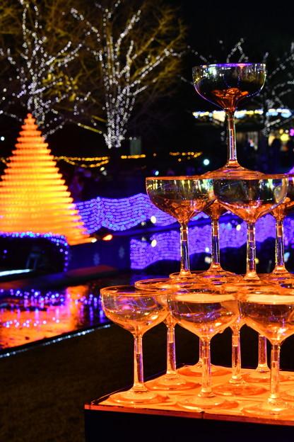 色が変わるミニシャンパングラスツリーとカナール噴水広場 昭和記念公園 20171223