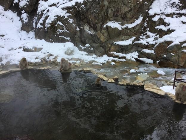 撮って出し。。今日温泉空いております。。(^_^;) 2月3日