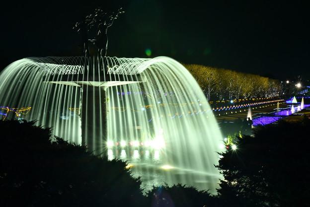 昭和記念公園カナール噴水裏から。。ライトの光 20171223