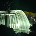 写真: 昭和記念公園カナール噴水裏から。。ライトの光 20171223