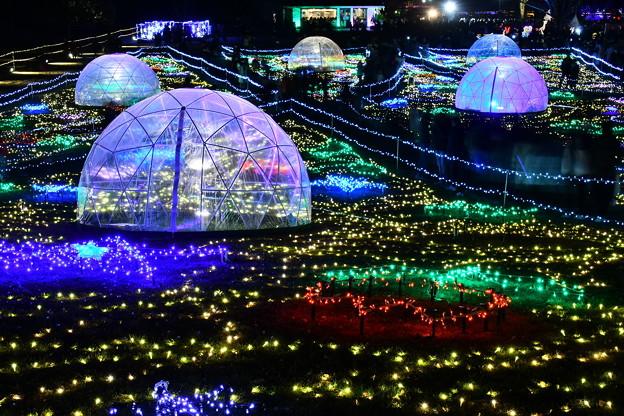 昭和記念公園イルミネーション 宇宙の風景を思わせる(3) 20171223