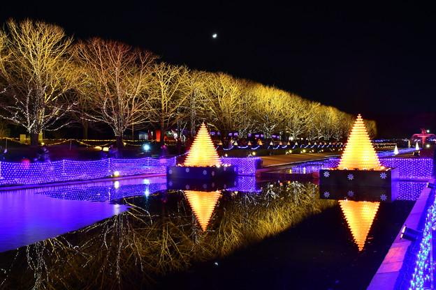 昭和記念公園イルミネーション 静寂な池の水面映る 20171223