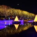 写真: 昭和記念公園イルミネーション 静寂な池の水面映る 20171223