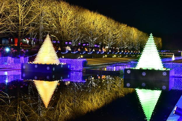 昭和記念公園イルミネーション 鏡のような水面映る電飾 20171223