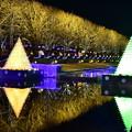 写真: 昭和記念公園イルミネーション 鏡のような水面映る電飾 20171223