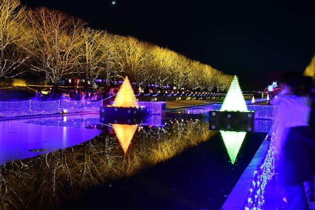昭和記念公園イルミネーション映り込む カナール噴水広場 20171223