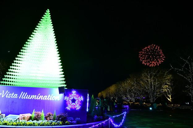 昭和記念公園WinterVista illuminationと冬の花火 20171223