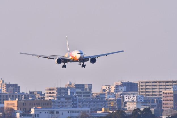 撮って出し。。福岡空港周辺からANAのオリンピックジェット来た 2月17日