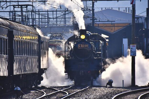 朝の新金谷駅の風景 SL C5644 蒸気上げて(1) 20180120