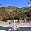 写真: 結構長い大井川にかかる吊り橋。。大井川鐵道塩郷駅 20180120