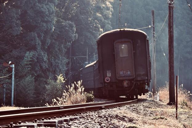 客車を見送って。。大井川鐵道 抜里 20180120