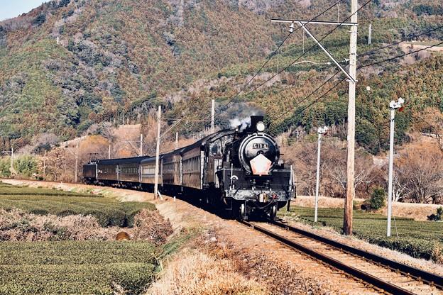日暮れの大井川鐵道SL C108抜里の茶畑を。。(4) 20180120