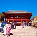 鎌倉鶴岡八幡宮。。源頼朝のお膝元 20180127