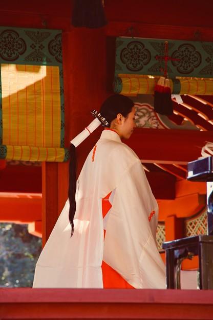 鎌倉鶴岡八幡宮。。巫女さん 20180127