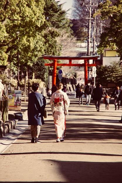 鎌倉鶴岡八幡宮。。着物で歩くと似合う風景 20180127