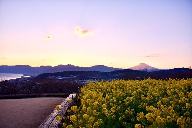 だんだん日が暮れて。。誰もいない吾妻山公園 20180204