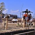 Photos: 勢いある馬の走り。。曽我梅林の流鏑馬 20180211