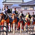 Photos: 戦って来た流鏑馬の馬たち。。これから得点高い騎手で決勝 20180211