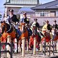 戦って来た流鏑馬の馬たち。。これから得点高い騎手で決勝 20180211