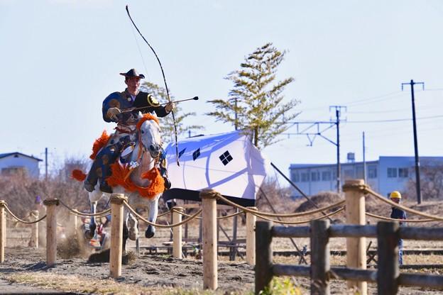 サラブレッドの白い馬。。走りが違う 流鏑馬 20180211