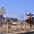Photos: 曽我の流鏑馬。。的が小さくなって矢を放つ命中(1) 20180211
