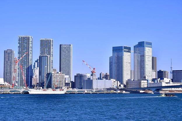晴海埠頭に帆船日本丸。。都会のビル群の中に 20180212