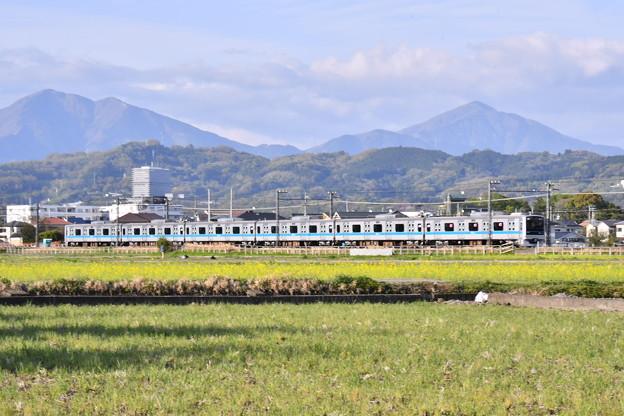 撮って出し。。最後少し残る菜の花と小田急線 4月7日