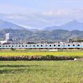 Photos: 撮って出し。。最後少し残る菜の花と小田急線 4月7日