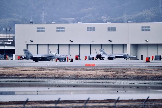 厚木基地から移動した艦載機たち。。タロン  20180219