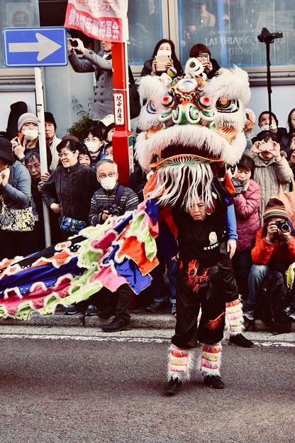 横浜中華街春節 祝舞遊行 機敏な動きの中国獅子舞 20180224