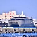 写真: 米軍施設横浜ノースドック瑞穂埠頭 高速輸送艦グアム(1) 20180304
