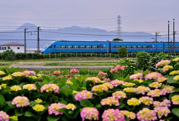 写真: 撮って出し。。田植えシーズン終えて紫陽花と小田急ロマンスカーMSE 5月26日