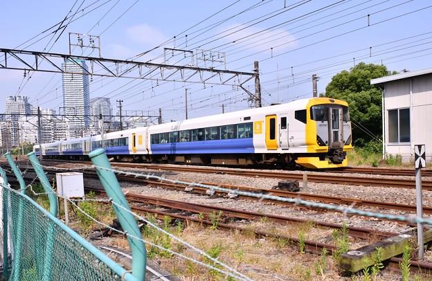 撮って出し。。千葉の房総特急E257系横浜貨物路線高島線を走る 5月27日