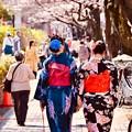 写真: 隅田公園桜まつりと浴衣女子。。20180325