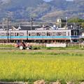 夕暮れの開成町 小田急線走って。。田植え準備かな(^^) 20180407