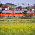 Photos: 夕暮れの開成町を走る眩しいオレンジの小田急新型ロマンスカーGSE