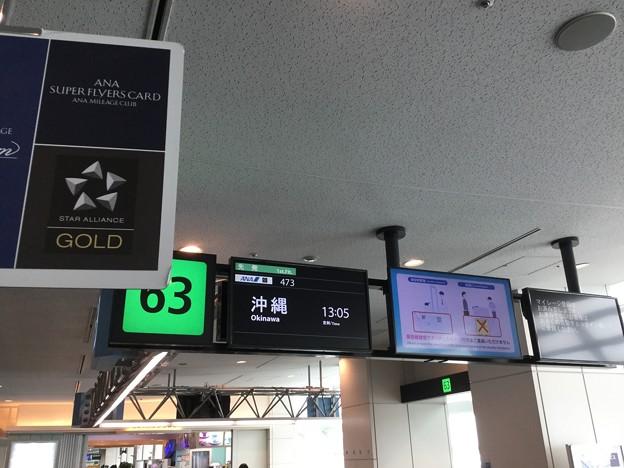 撮って出し。。急遽沖縄遠征へ。。羽田空港 6月17日