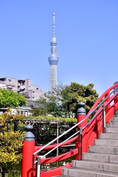 東京スカイツリーよく見える。。20180422
