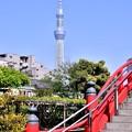 写真: 東京スカイツリーよく見える。。20180422