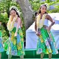 Photos: 華麗に可愛く踊るフラダンス。。(4) 20180422
